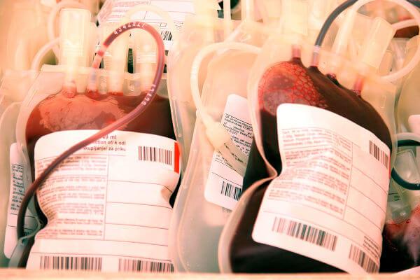 Após a doação, o sangue passará por uma série de exames.