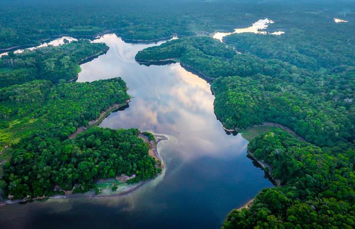 O bioma Amazônia é o maior do Brasil e considerado a área de maior biodiversidade do planeta.