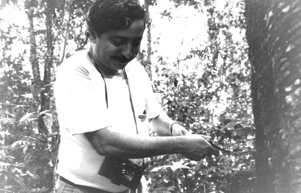 Chico Mendes aprendeu o ofício de seringueiro com o seu pai. ¹