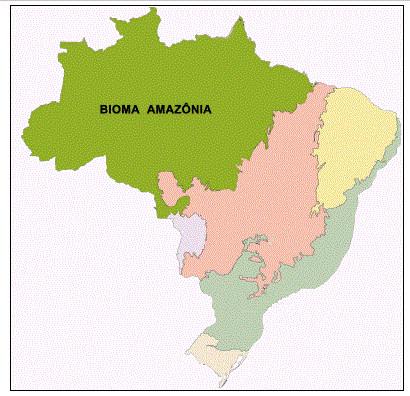 Mapa do bioma Amazônia. (Fonte: Instituto Brasileiro de Geografia e Estatística)