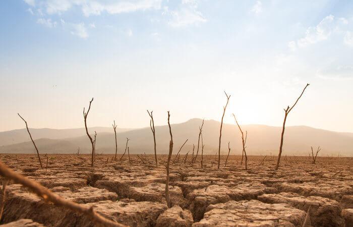 O aumento na temperatura média do planeta pode desencadear longos períodos de estiagem no futuro.