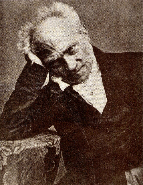 Arthur Schopenhauer fez parte dos estudos de Nietzsche em sua juventude.