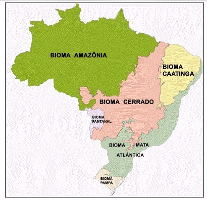 Mapa dos biomas brasileiros. (Fonte: IBGE)