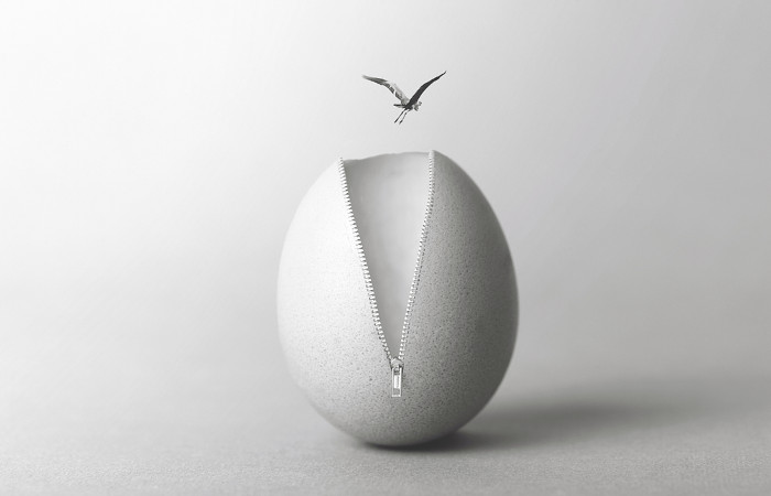 Representação de ovo aberto por um zíper, de inspiração surrealista.