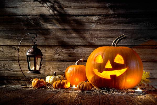 A abóbora transformou-se em um símbolo do Halloween nos Estados Unidos.