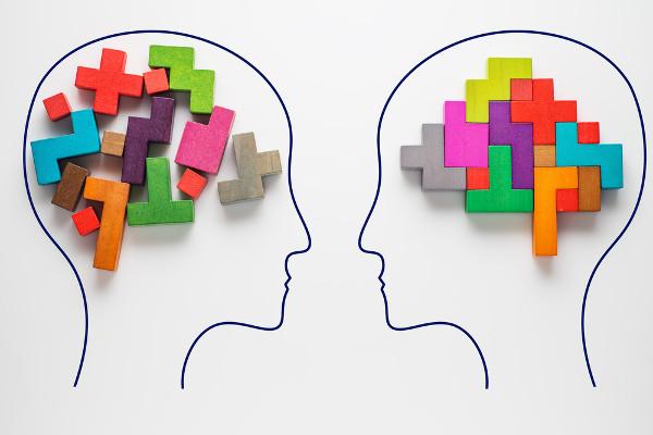 A lógica determina a organização e a validade do pensamento e dos enunciados linguísticos.