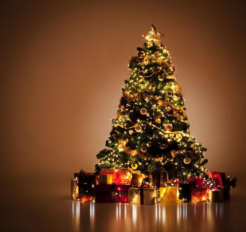 A árvore de Natal é um símbolo pagão e está relacionada com um festival religioso dos nórdicos.