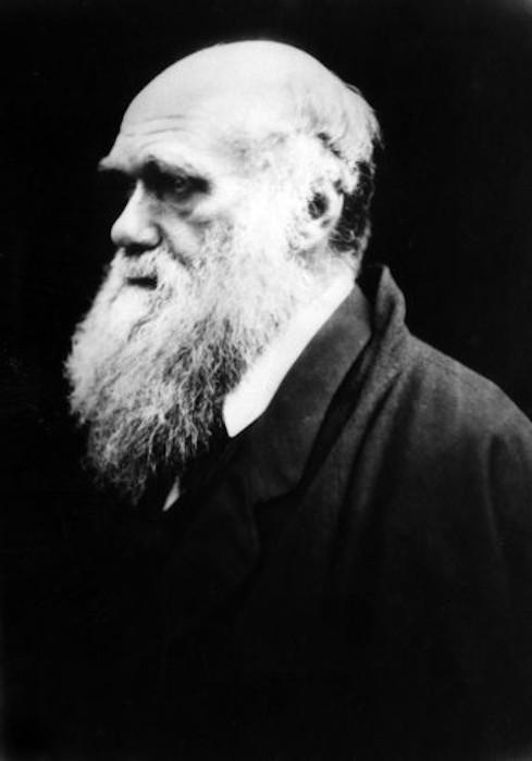 Darwin foi um importante cientista que propôs o mecanismo da seleção natural para explicar a evolução.