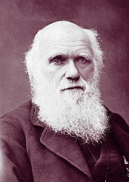 O biólogo inglês Charles Darwin foi uma das inspirações teóricas para o desenvolvimento das primeiras teorias antropológicas.