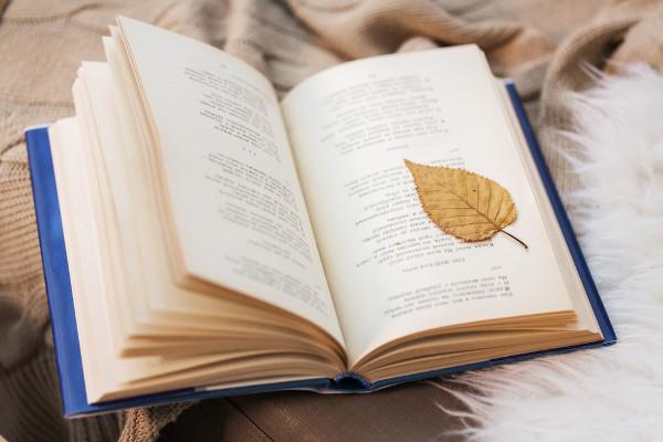 Versos, estrofes e rimas são elementos comumente encontrados em textos líricos.