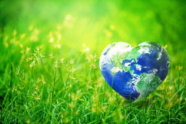 O Dia da Terra foi criado a fim de conscientizar toda a sociedade a respeito de importância de ações para a preservação do nosso planeta.