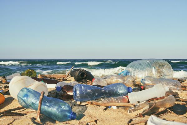 A poluição nas águas prejudica o desenvolvimento da vida marinha.