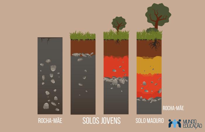 Esquema representativo do processo de evolução dos solos.