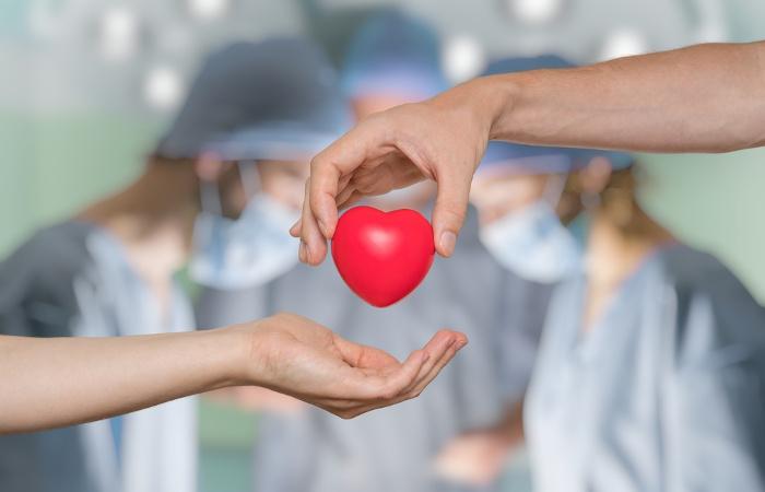 A doação de órgãos pode salvar várias vidas. Uma única pessoa pode salvar cerca de 10 pessoas quando opta por ser um doador.