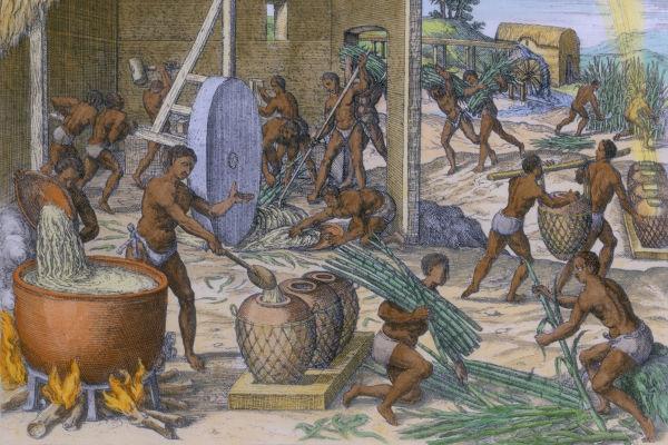 A abolição do trabalho escravo era debatida desde a independência do Brasil, mas só ganhou força a partir de 1860.