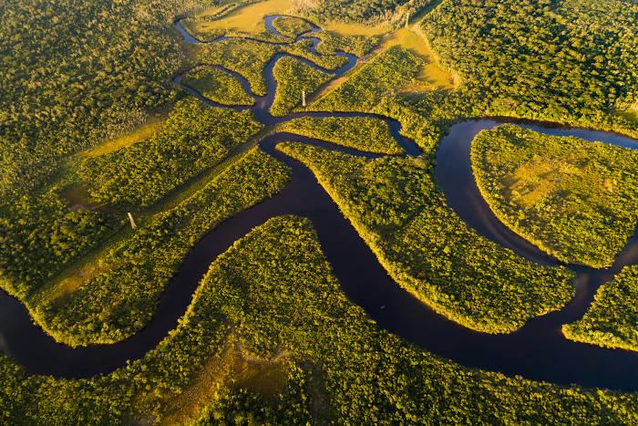 Floresta Amazônica no Brasil possui importância mundial pela sua grande biodiversidade.