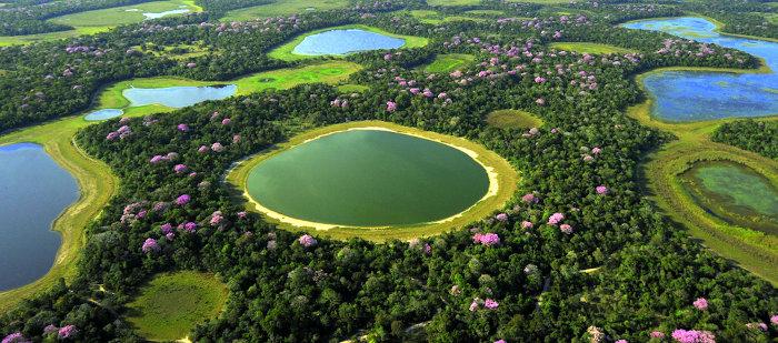 Relevo: planícies de inundação do Pantanal.
