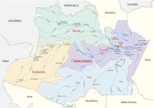 A divisão geográfica do Amazonas ocorre com base em macrorregiões.