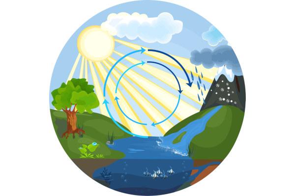 O ciclo da água garante que esse elemento circule no ambiente.