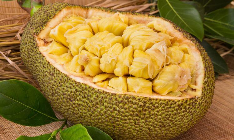 A jaca é uma fruta que pode ser consumida in natura, usada na fabricação de doces e até mesmo para substituir o frango em receitas.
