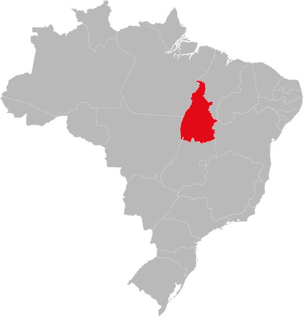 O estado do Tocantins foi criado a partir da divisão do estado de Goiás.