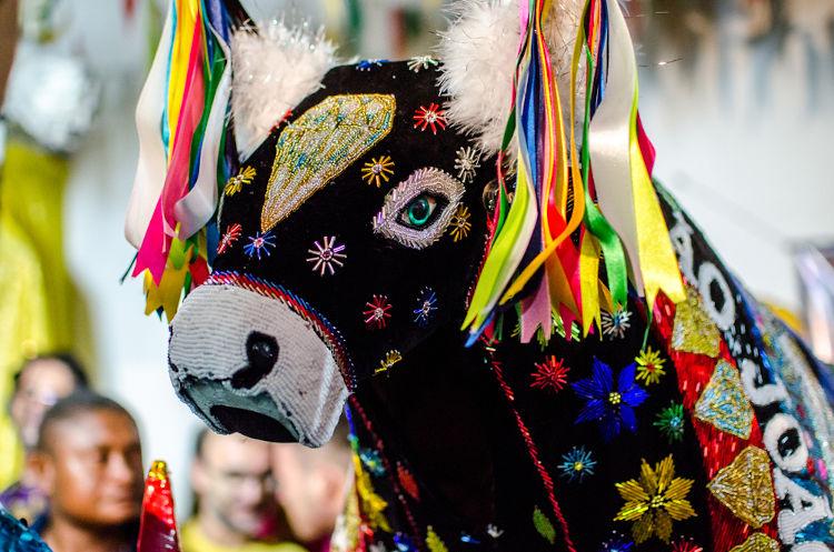Bumba-meu-boi é a principal manifestação cultural do Maranhão.