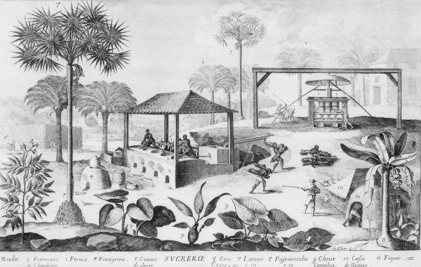 A Lei dos Sexagenários estabeleceu que os escravizados com 60 anos ou mais seriam considerados livres.