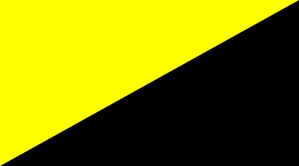 A bandeira anarcocapitalista é composta pela cor amarela, que representa a riqueza do capital, e pela cor preta, que representa o anarquismo.