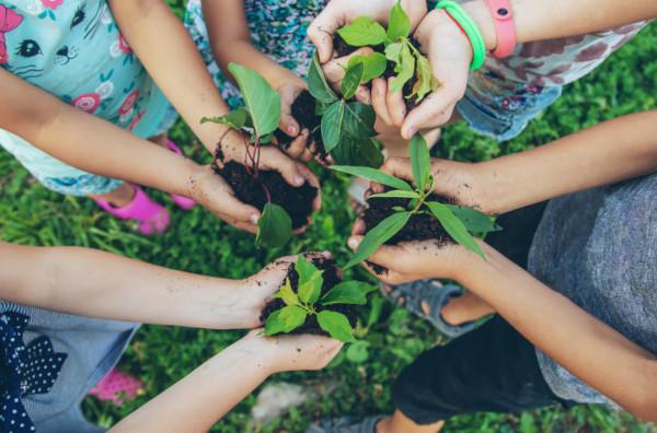 A aplicação do conceito de desenvolvimento sustentável necessita da participação de diversos setores da sociedade.