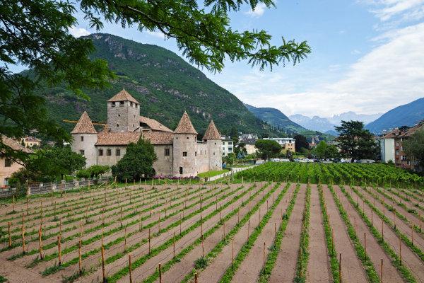 Os feudos eram grandes propriedades de terra onde se baseavam as relações sociais e econômicas durante a Idade Média.