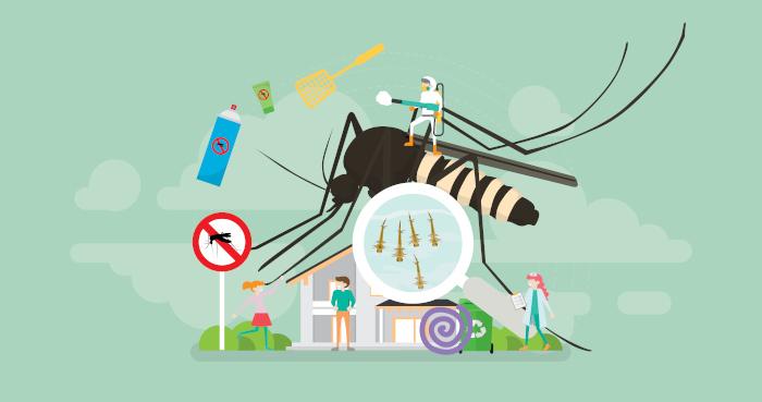 A luta contra o mosquito Aedes aegypti é importante para a prevenção não só da chinkugunya, como também da dengue, zika e febre amarela.