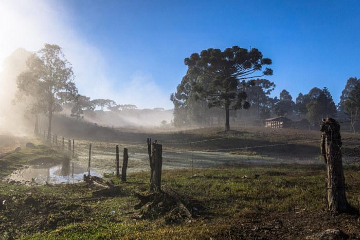 No Brasil, o inverno é geralmente marcado pelo tempo mais frio e seco, sendo que, nas manhãs, é comum a ocorrência de nevoeiros.