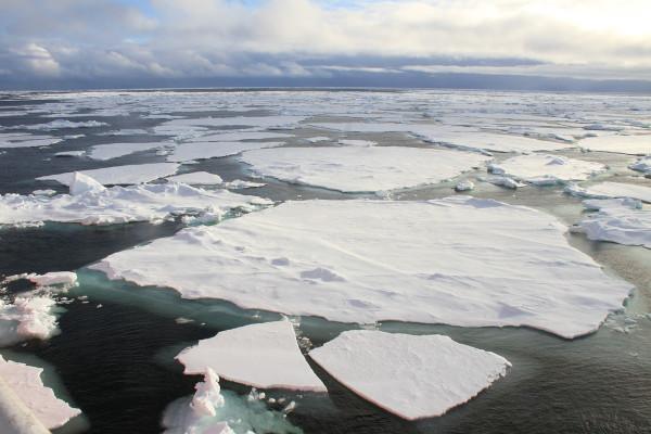 O Oceano Glacial Antártico apresenta grandes blocos de gelo que flutuam sobre as águas oceânicas.