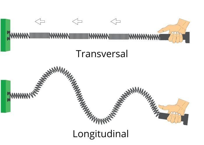 Esquema ilustra a diferença entre as ondas longitudinais e transversais
