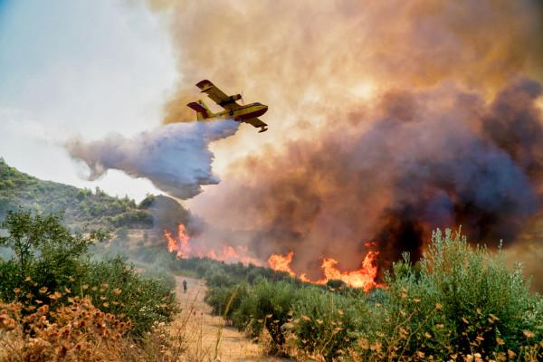 O registro de grandes incêndios florestais tornou-se frequente nos últimos anos na Europa.[1]