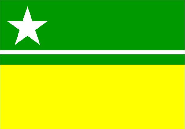 Bandeira de Boa Vista.