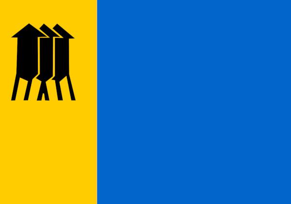 Bandeira de Porto Velho.