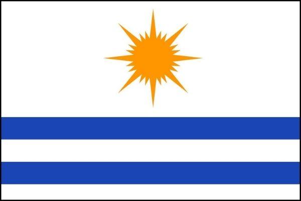 Bandeira de Palmas.