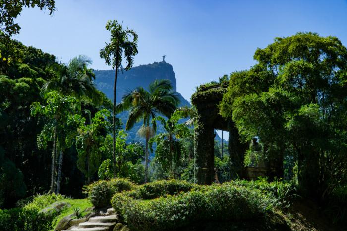 Foto do Jardim Botânico no Rio de Janeiro.