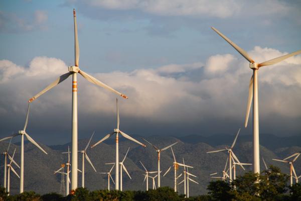 Os aerogeradores na paisagem indicam a presença de usinas eólicas.