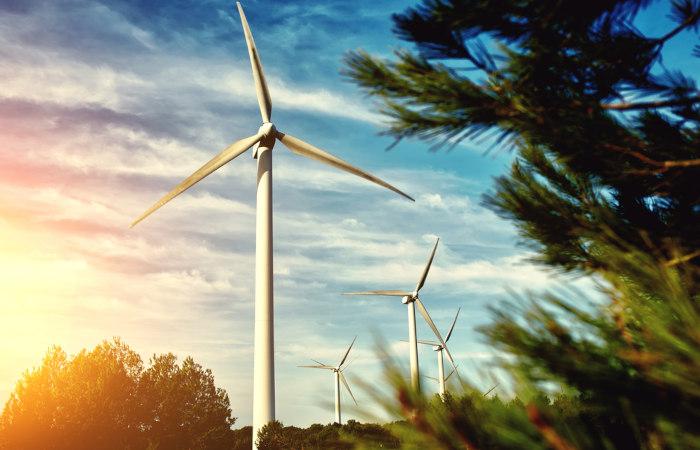 Turbinas usadas na produção de energia eólica.