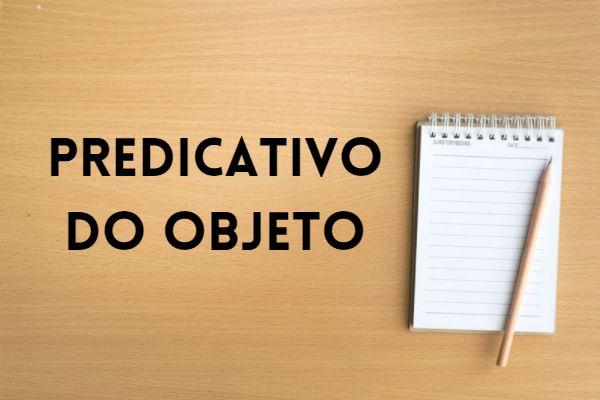 O predicativo do objeto classifica e qualifica o objeto da oração.