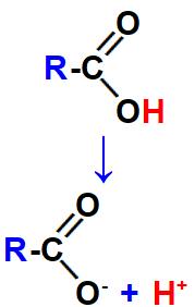 Equação que representa a ionização do ácido carboxílico.