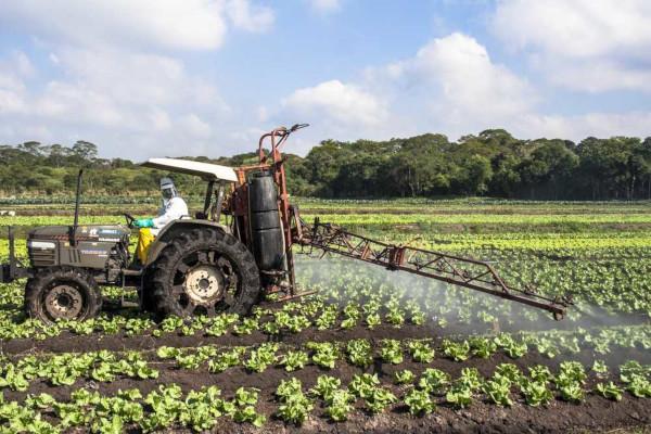 A agricultura comercial, ou moderna, é voltada para o abastecimento do mercado externo e conta com o uso de tecnologias para aumentar a produtividade.*
