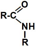 Modelo-padrão de uma amina monossubstituída