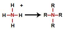 Substituição dos hidrogênios do amônio por radicais orgânicos