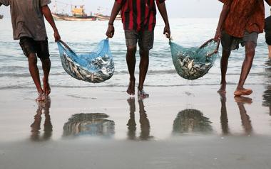 A pesca ainda é uma importante prática econômica