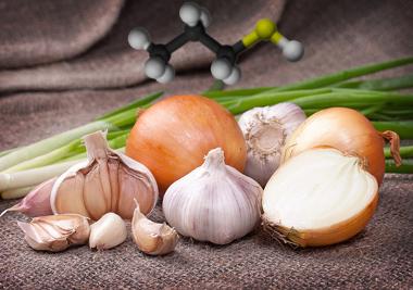O cheiro da cebola, alho e cebolinha devem-se a compostos sulfurados
