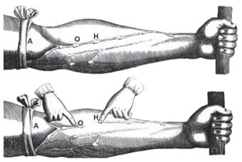 Observe a ilustração retirada do livro De Motu Cordis