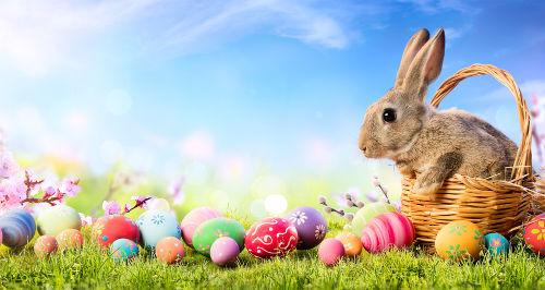 O coelho e os ovos foram símbolos agregados à Páscoa a partir da influência de outras culturas